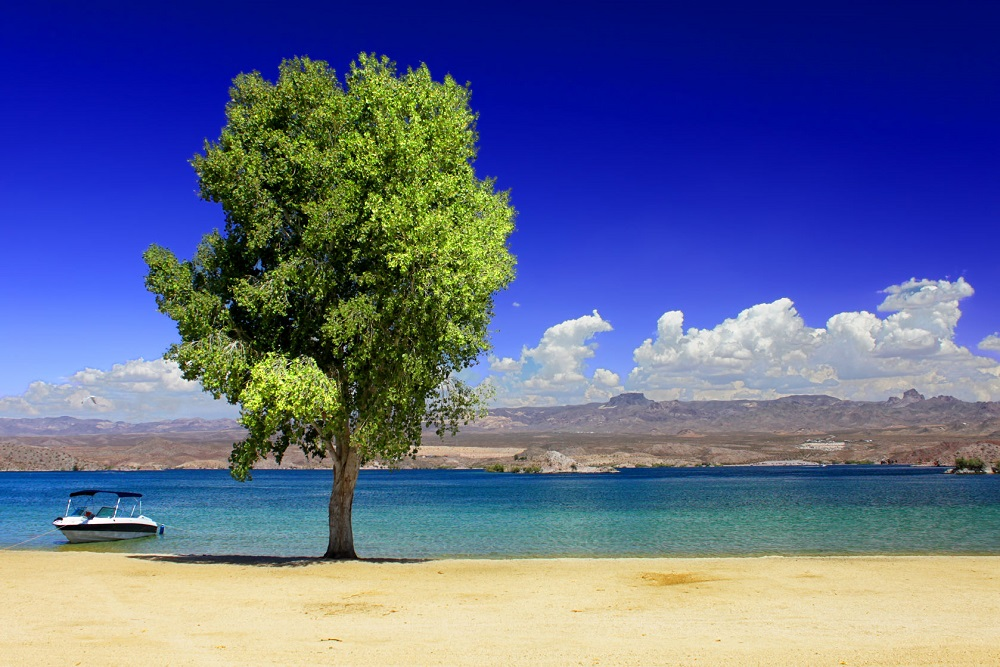 Lake Mohave Scenic Beach